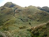 每年必會山岳之七星山系步道:20110408七星山主峰27
