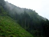新竹縣---橫山鄉:外比來山區秘境亂闖29