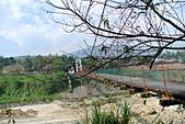南投縣---竹山鎮:桶頭村彩虹吊橋12