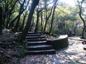 每年必會山岳之七星山系步道:20110408七星山主峰13
