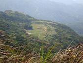 每年必會山岳之七星山系步道:20110408七星山主峰19