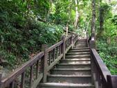 新北市---烏來區:內洞國家森林遊樂區19