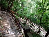 新北市---烏來區:內洞國家森林遊樂區20