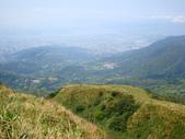 每年必會山岳之七星山系步道:20110408七星山主峰47