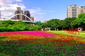古亭河濱公園花海:2015心形花海暨順遊河濱公園19