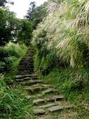 每年必會山岳之七星山系步道:20111011夢幻湖七星山東峰4