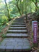 每年必會山岳之七星山系步道:20110408七星山主峰8