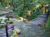 每年必會山岳之七星山系步道:20110408七星山主峰6