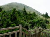 每年必會山岳之七星山系步道:20111011夢幻湖七星山東峰12