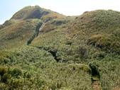 每年必會山岳之七星山系步道:20110408七星山主峰26