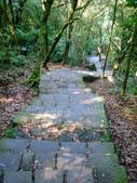 每年必會山岳之七星山系步道:20110408七星山主峰11
