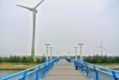 台中市---大安區:龜殼公園2