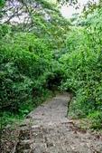 台北市---士林區:內雙溪樹木標本園8