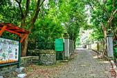台北市---士林區:內雙溪樹木標本園1