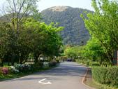 每年必會山岳之七星山系步道:20110408七星山主峰3