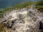 每年必會山岳之七星山系步道:20110408七星山主峰52