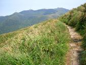 每年必會山岳之七星山系步道:20110408七星山主峰57