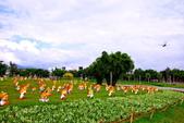 台北市---中山區:20141001高通通的感恩之旅16