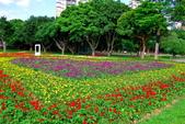 古亭河濱公園花海:2015心形花海暨順遊河濱公園5