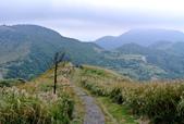 每年必會山岳之七星山系步道:20131004七星山東峰單攻22