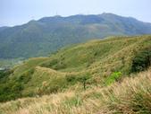 每年必會山岳之七星山系步道:20110408七星山主峰53