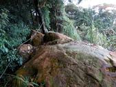 每年必會山岳之天上山:20121219三粒半天上山31
