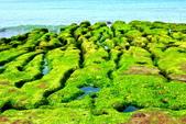 新北市---石門區:老梅綠藻礁30