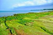 新北市---石門區:老梅綠藻礁13