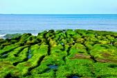 新北市---石門區:老梅綠藻礁32