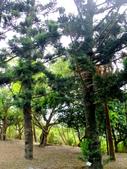 宜蘭縣---冬山鄉:仁山植物園台式庭園展示區5