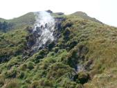 每年必會山岳之七星山系步道:20110408七星山主峰58