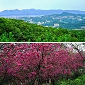 台北市---文山區:相簿封面