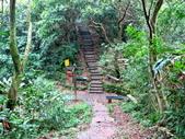每年必會山岳之天上山:20140413賞桐步道天上山35