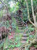 每年必會山岳之天上山:20140413賞桐步道天上山30