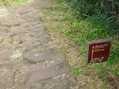每年必會山岳之七星山系步道:20110408七星山主峰24
