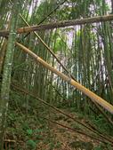 新竹縣---五峰鄉:麥巴萊古道1K版9