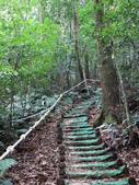 台中市---和平區:橫嶺山自然步道(木馬古道)12