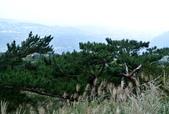 每年必會山岳之七星山系步道:20131004七星山東峰單攻27