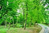 台北市---士林區:內雙溪樹木標本園6