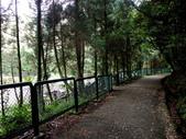 每年必會山岳之七星山系步道:20111011夢幻湖七星山東峰23