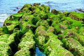 新北市---石門區:老梅綠藻礁21