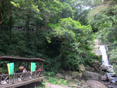 新北市---烏來區:內洞國家森林遊樂區10