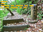 每年必會山岳之天上山:20140413賞桐步道天上山1