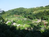 台中市---和平區:橫嶺山自然步道(木馬古道)3