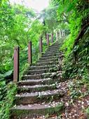 每年必會山岳之天上山:20140413賞桐步道天上山4