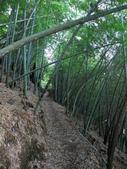 台中市---和平區:橫嶺山自然步道(木馬古道)4