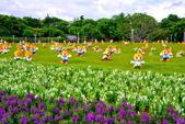 台北市---中山區:20141001高通通的感恩之旅23