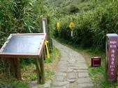 每年必會山岳之七星山系步道:20110408七星山主峰66