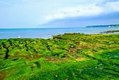新北市---石門區:老梅綠藻礁33