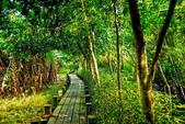 新竹縣---峨眉鄉:十二寮生態步道